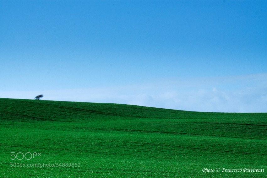Photograph Green ireland by Francesco Pulvirenti on 500px