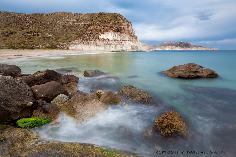 Photograph Entre verde...y mar by Isabel Asurmendi on 500px