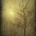 A particularly foggy sunrise and a stark single tree, using 2 overlaid textures and a grunge edge.