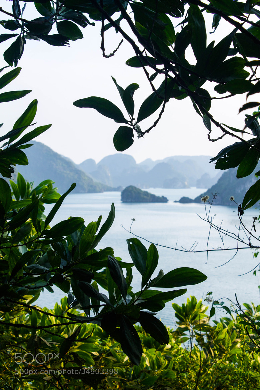 Photograph Ha Long bay  by Aerni Adeline on 500px