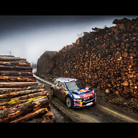 WRC Wales Rally GB '11 by João Faria (joaomfaria)) on 500px.com