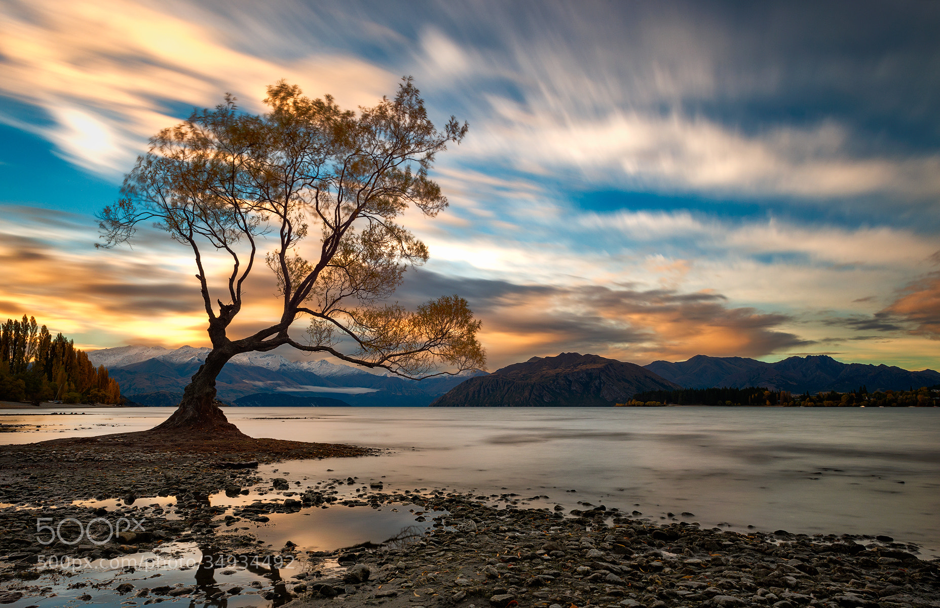 Photograph The Color Surge  by Danny Xeero on 500px