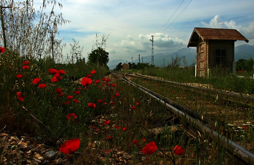Photograph railway... by Zeki Bilgin on 500px