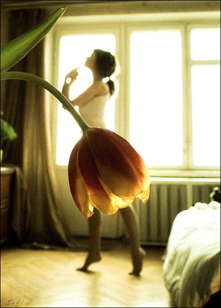 Photograph Morning Mood by Tatiana Mikhina on 500px