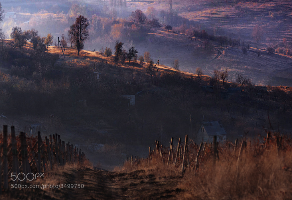 Photograph november morning by alexandru popovschi  on 500px