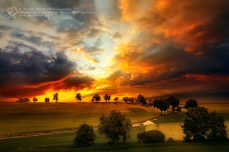 Photograph evening sun by Piotr Krol on 500px