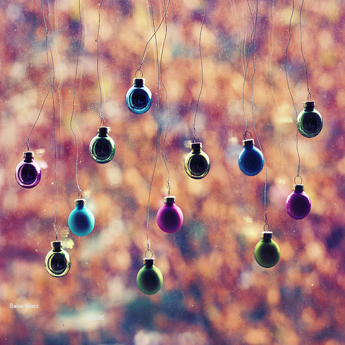 Photograph Balls of November by Bebe Mozz on 500px