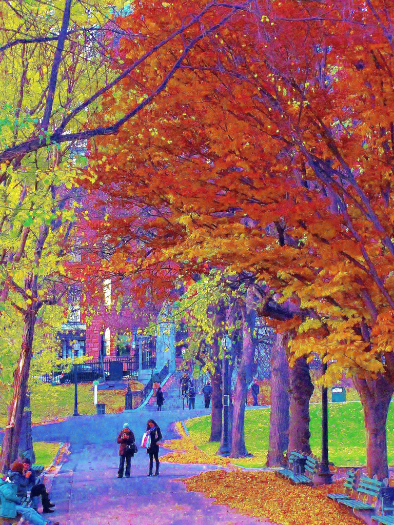 Photograph Early fall in Boston  by Paul Wyman on 500px