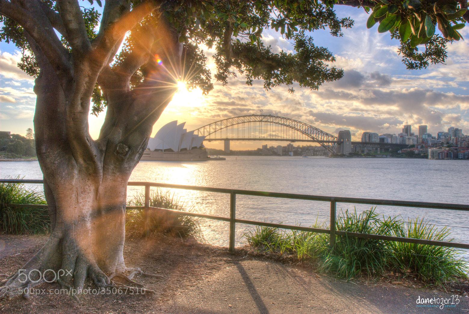 Photograph Sydney sunlight by Dane Tozer on 500px