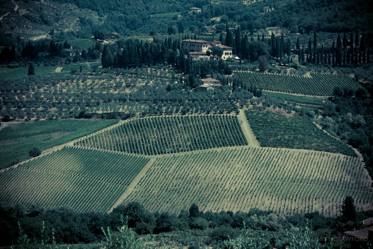 Photograph Vineyards by Stuart Crawford on 500px