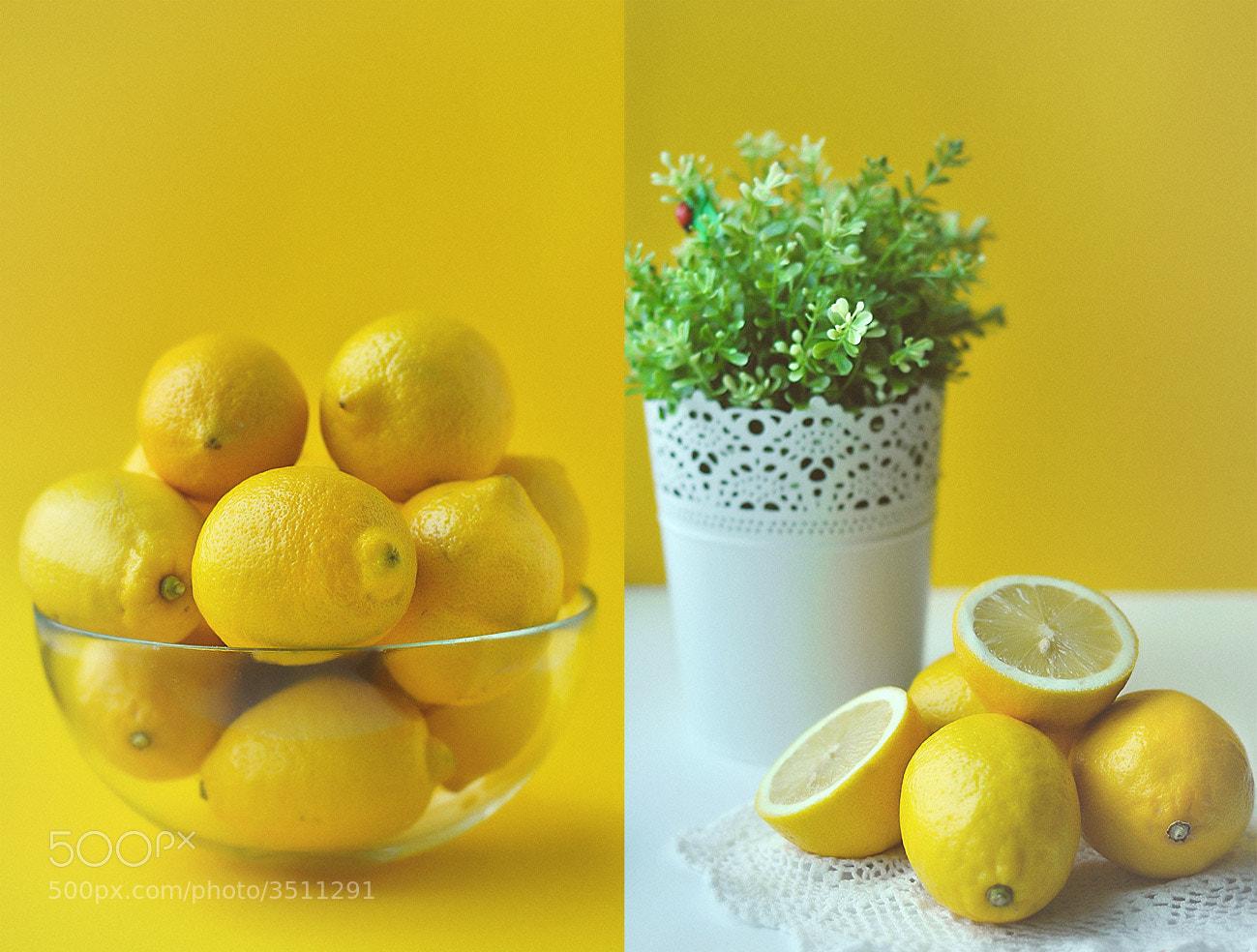 Photograph sunny lemon by Xenia  Lerta on 500px