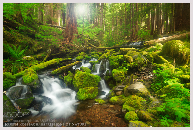Photograph Fairyland Cascades by Joseph Rossbach on 500px