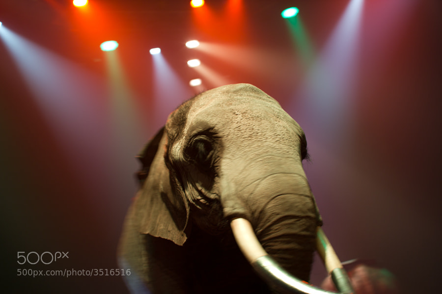 Photograph cirque by Sebastien Vasseur on 500px