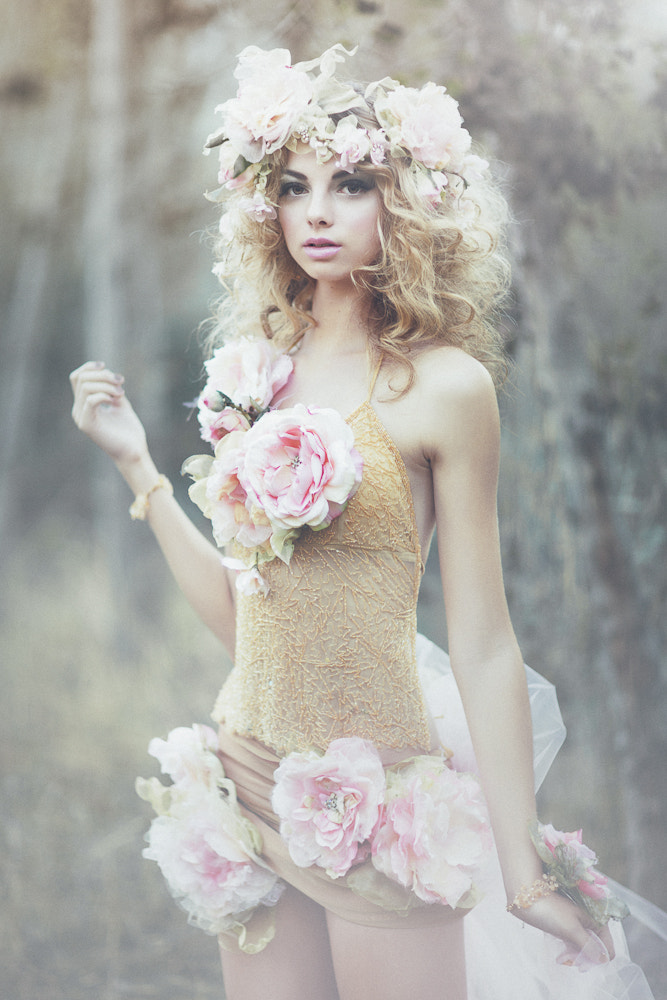 Photograph The Wild Rose Fairy by Emily  Soto on 500px