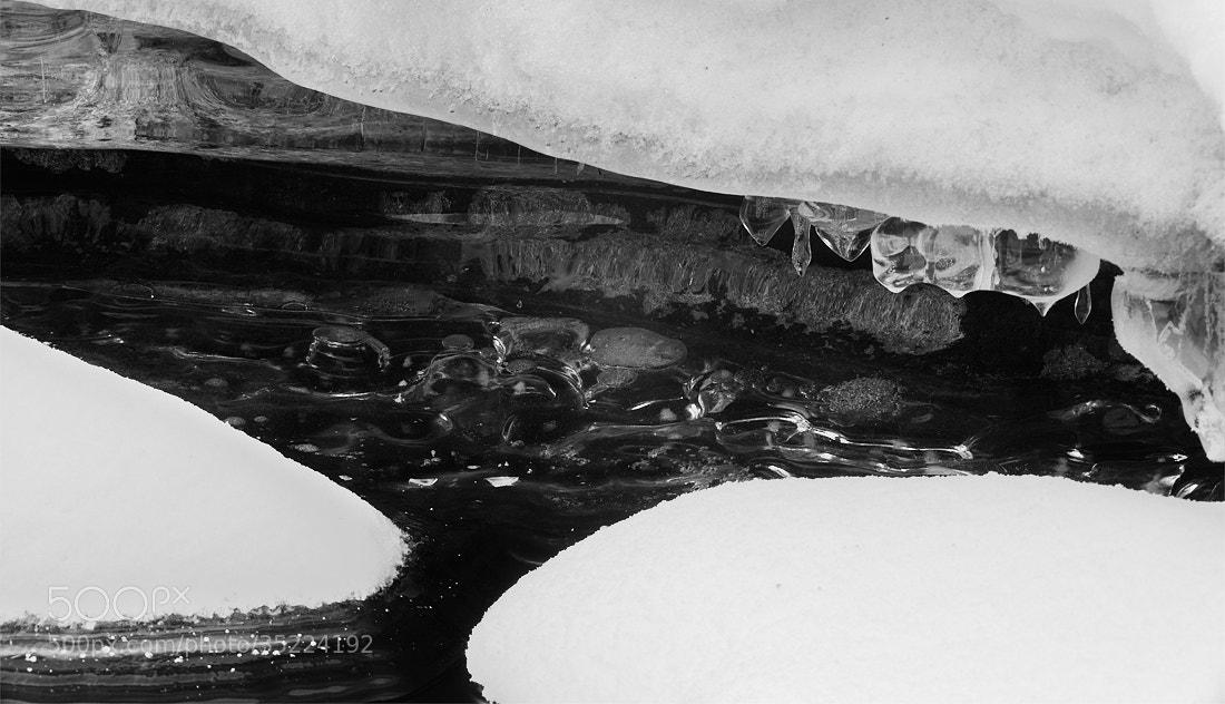 Photograph White & Frozen by Mikko Haapasaari on 500px