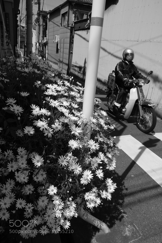 Photograph the corner of a street by nakajima hiroshi on 500px