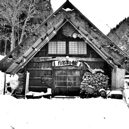 B&W House