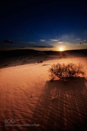 Photograph Untitled by Abdulrhman   Alfaleh on 500px