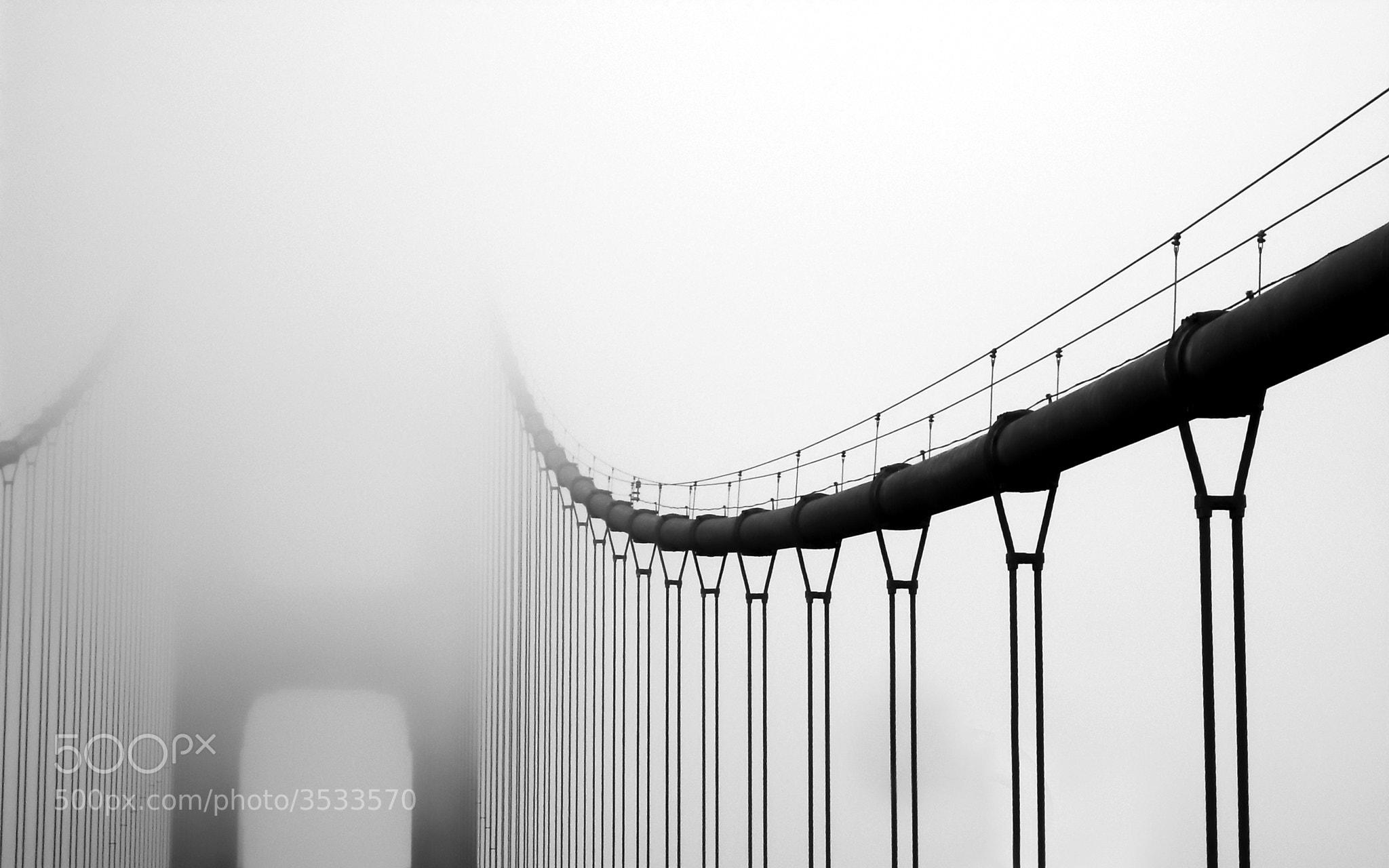 Photograph Vanishing Bridge by Matt Hanson on 500px