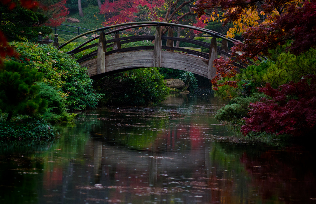 Photograph Moon Bridge by Darrin Snyder on 500px