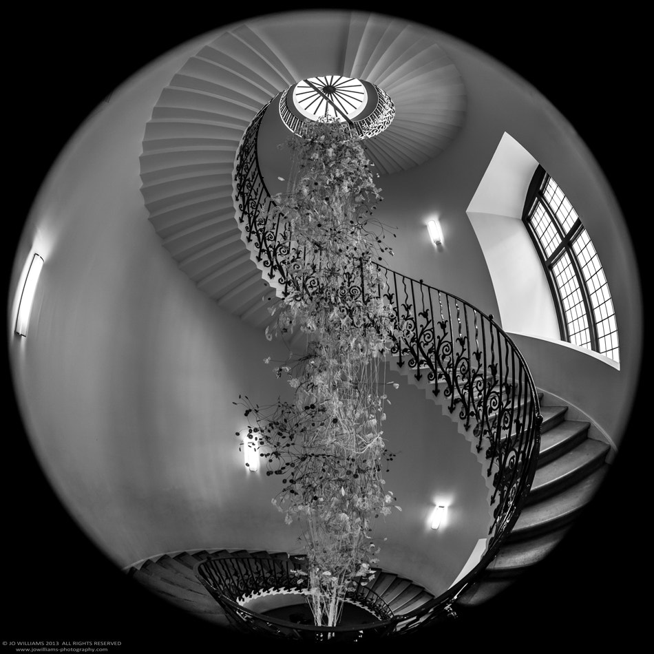 Photograph SPIRAL II by jo williams on 500px