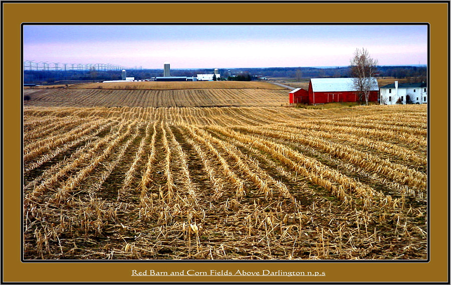 Red Barn & Corn Fields