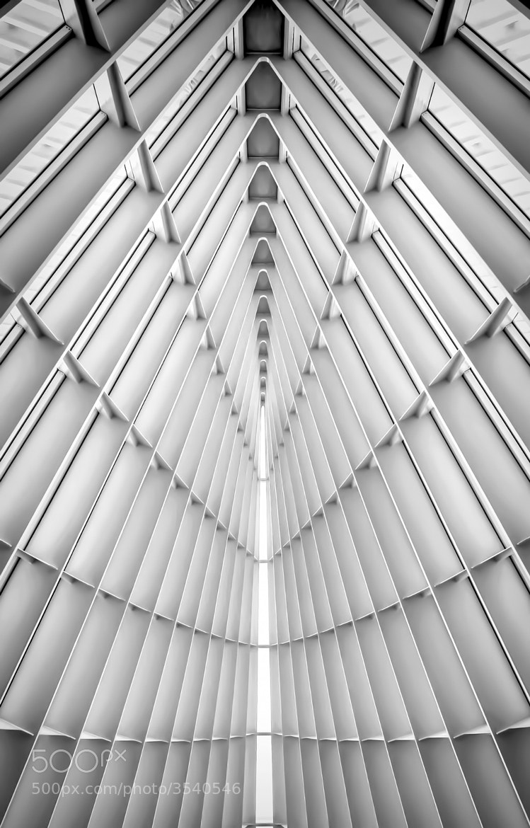 Photograph Symmetry by Scott Norris on 500px