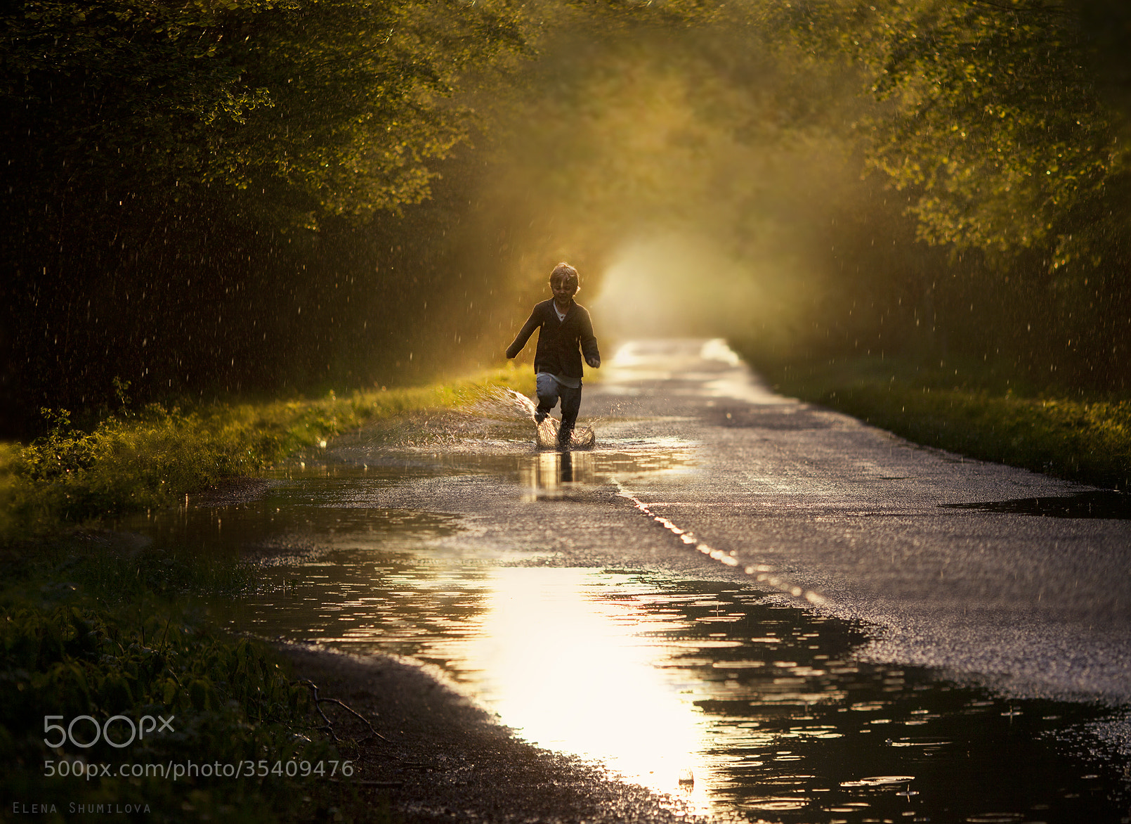 Photograph summer rain by Elena Shumilova on 500px