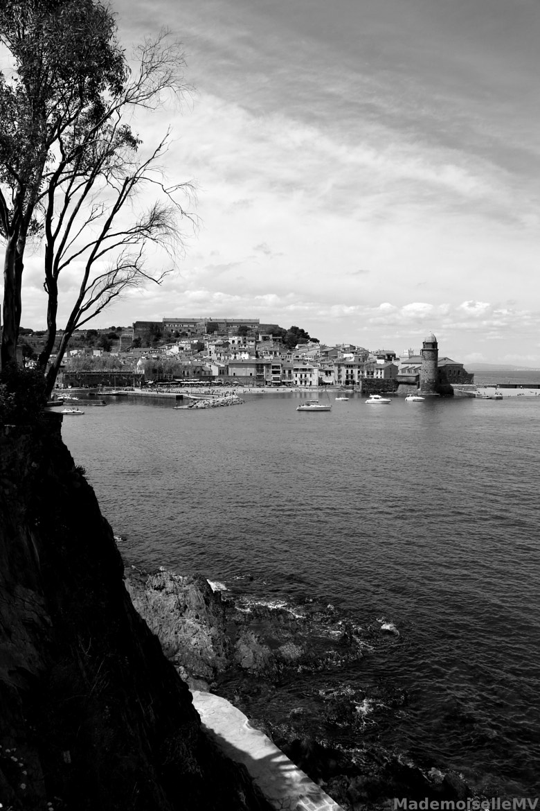 Photograph A view of Collioure by Mademoiselle MV on 500px