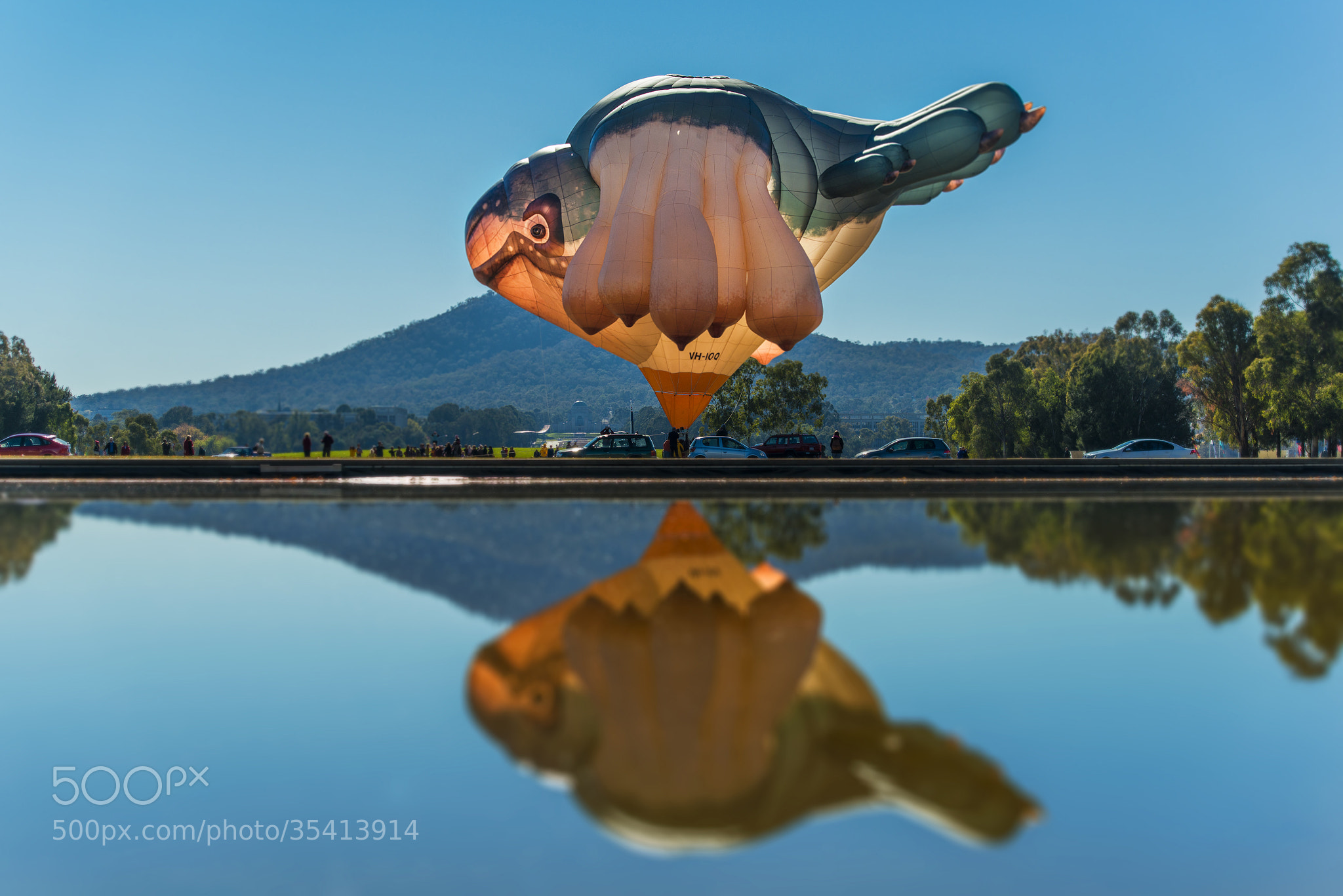 Photograph Skywhale by martin ollman on 500px
