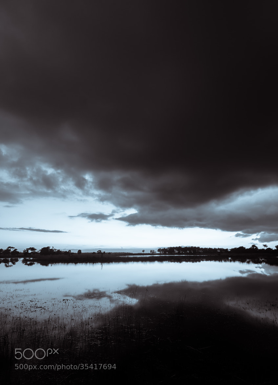 Photograph Strabrechtse Heide 104 by Mr. DESHAMER on 500px