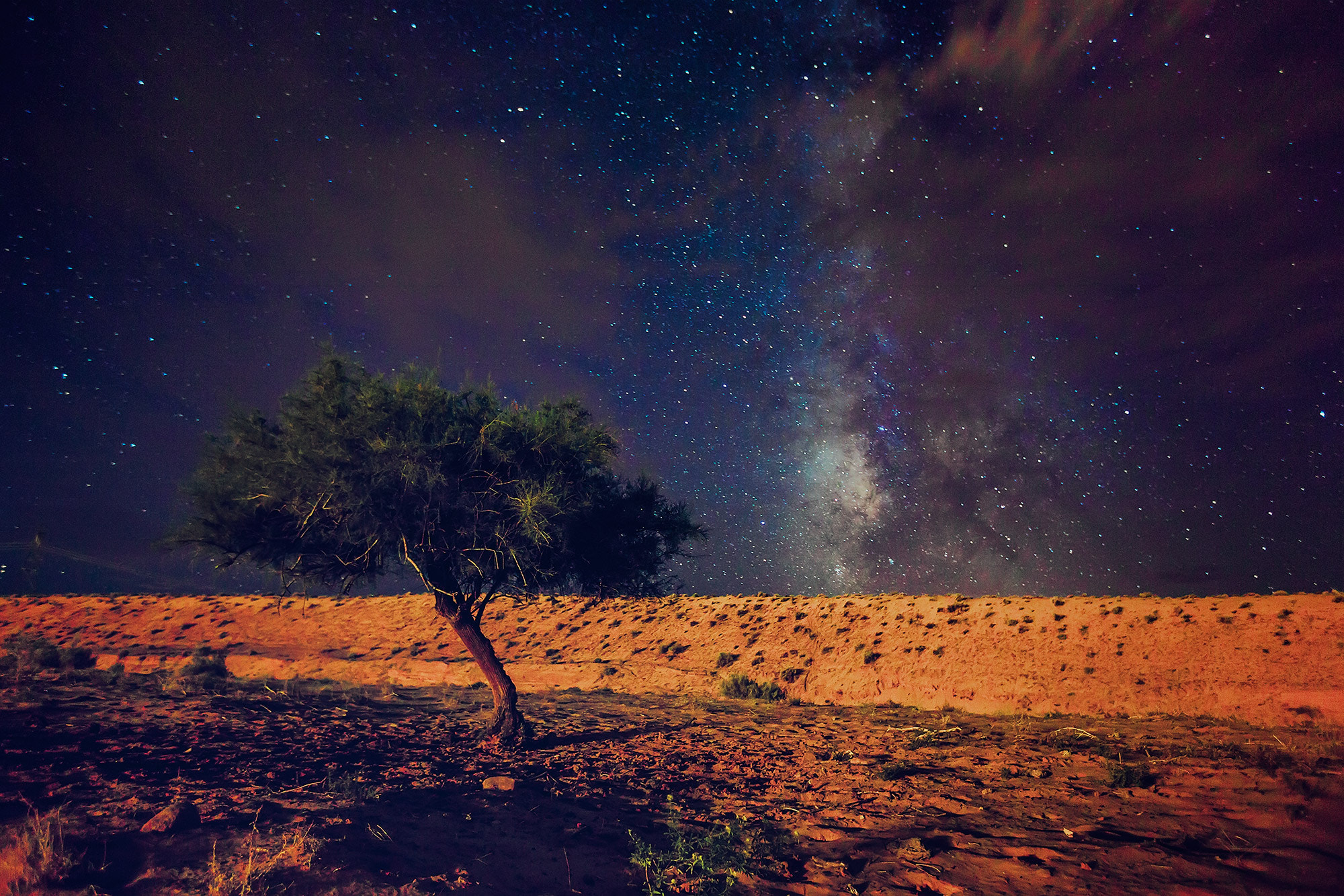 Photograph Midnight in the Desert by Paul Reiffer on 500px
