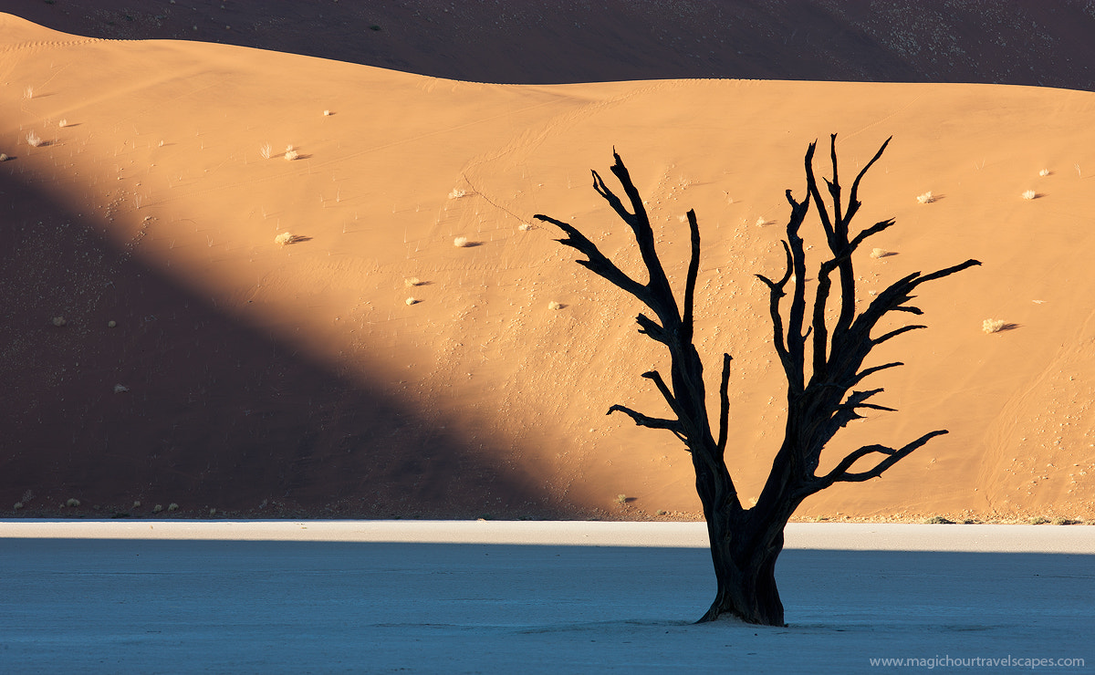 Photograph Dawn of the Deadvlei by Kah Kit Yoong on 500px