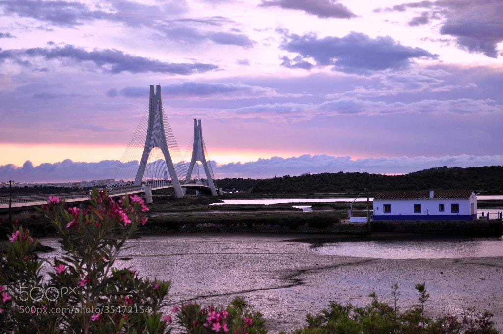 Photograph The bridge by José Eusébio on 500px