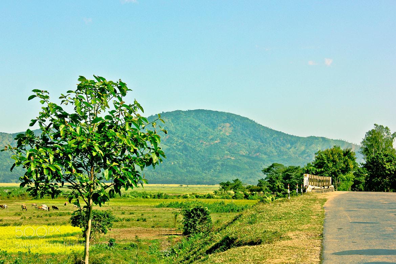 Photograph Rangira A∙bri by Tejan A Momin on 500px