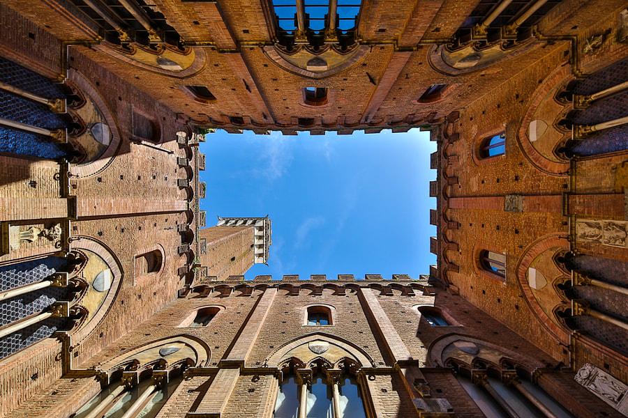 Siena Townhall