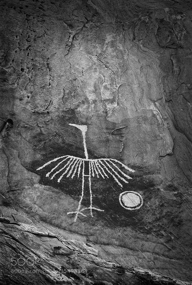 Photograph Wings of Stone by John Mumaw on 500px