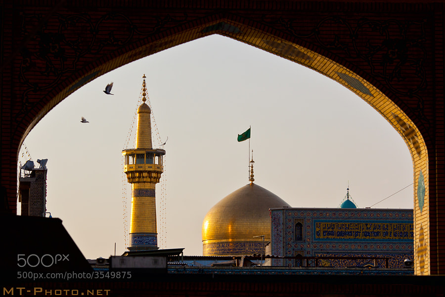 Imam: Ali ibn Musa Al Ridha (as) Mosque