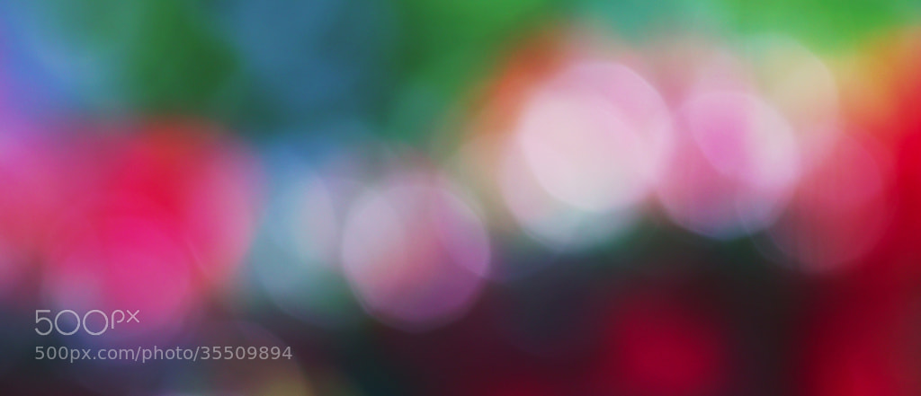 Photograph colors of happiness  by macaron* macaron* on 500px