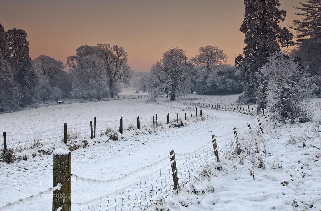Photograph Winter Wonderland by Gary McParland on 500px