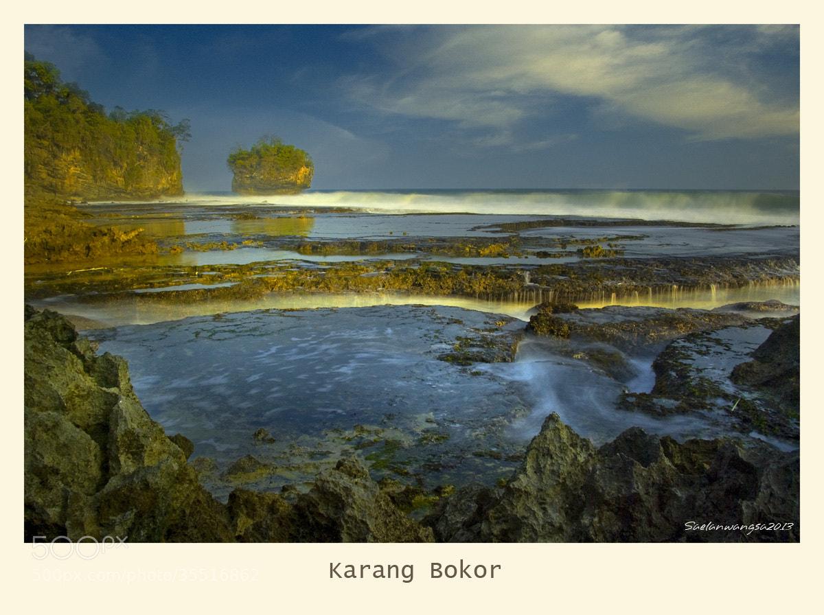 Photograph Coral bowl by Saelan Wangsa on 500px