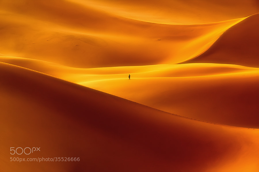 Photograph Against The Curves by Reza Nazemi on 500px