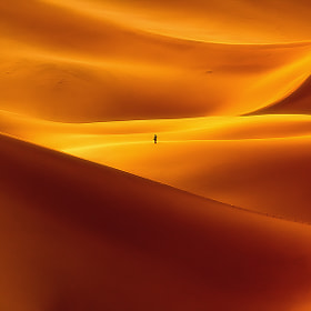 Against The Curves by Reza Nazemi on 500px.com