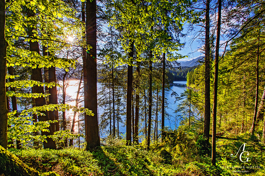 Afternoon on the Eibsee lake in the German Alps