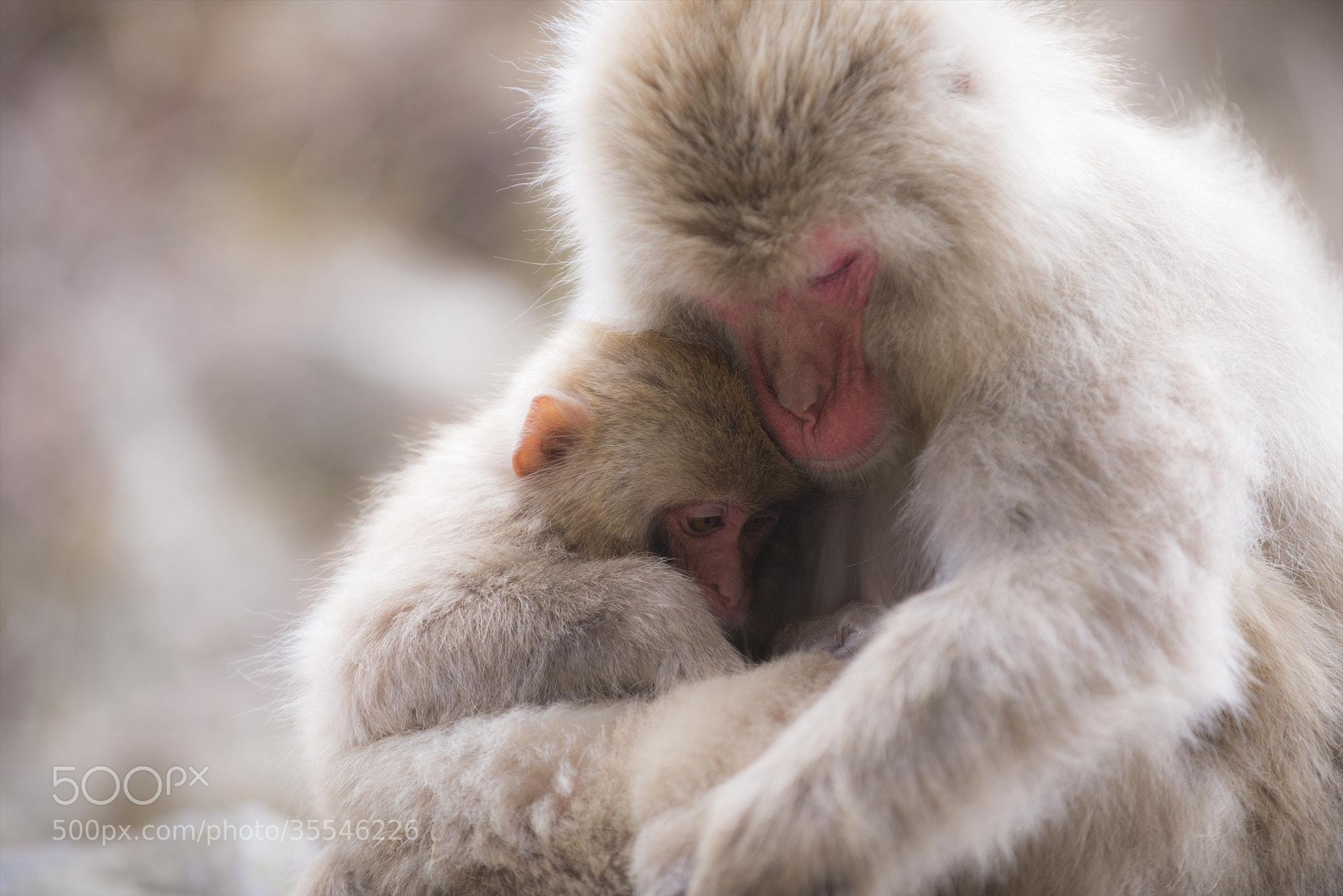Photograph Give me a Hug by hugh dornan on 500px