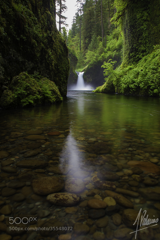 Photograph Punchbowl Falls by Alfonso Palacios on 500px