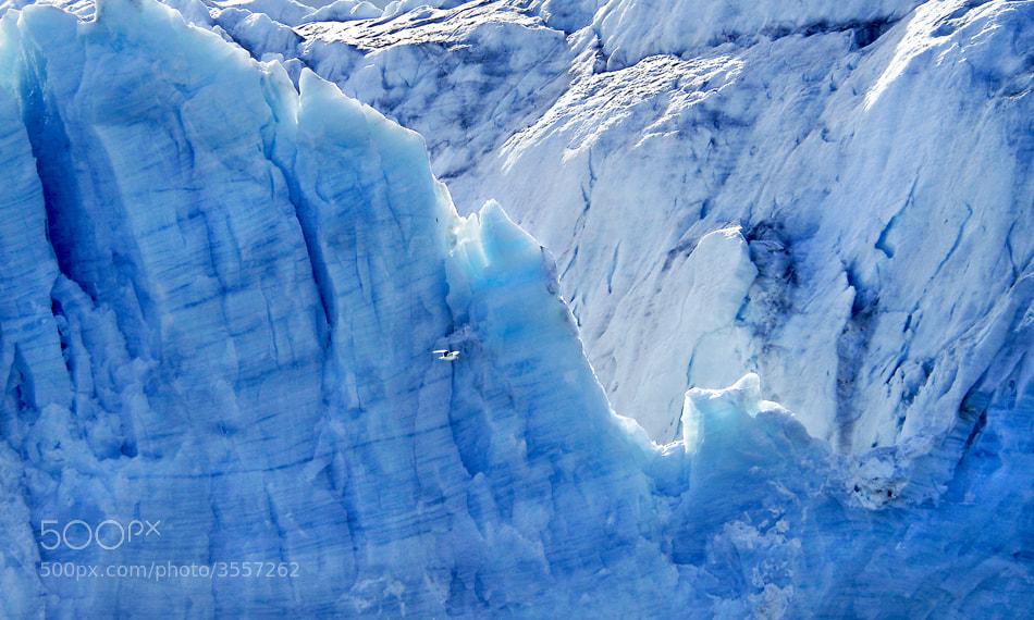 Photograph Glacier by David C. Schultz on 500px