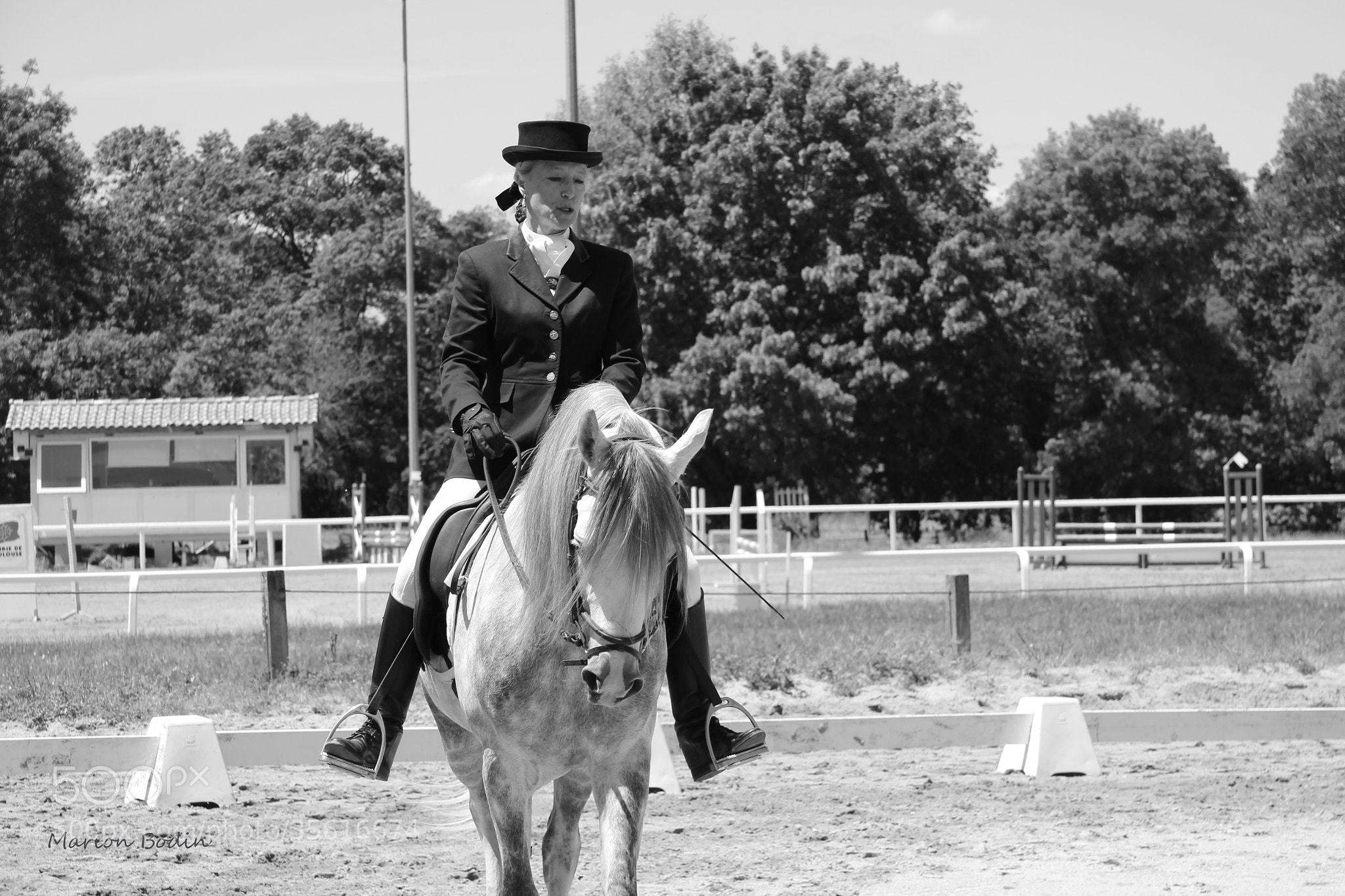 Photograph Dressage by Marion Bodin on 500px