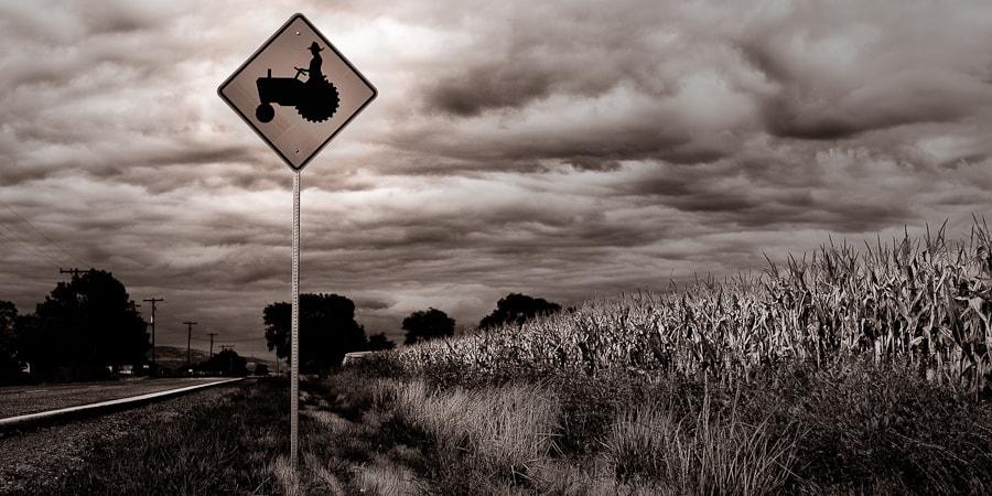 Photograph Tractor Crossing by Almighty  Whitey on 500px