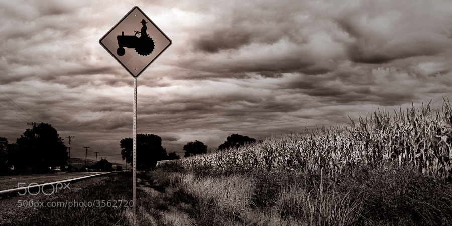 Photograph Tractor Crossing by Josh Ashdown on 500px